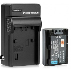 DSTE NP-FH50 Battery + US Plugsss Charger for Sony DSC-HX1, HX100, HX200, A390, A290, A330, A230